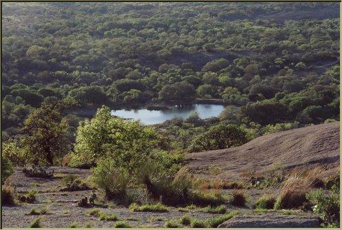 moss-lake