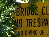bridgesign_thumb