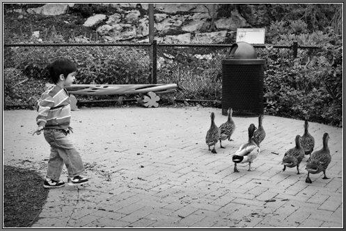 05132014 Zoo_13