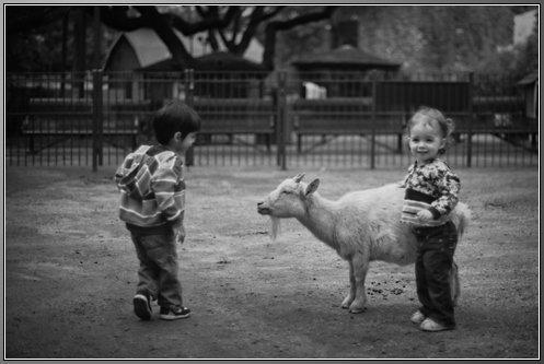 05132014 Zoo_16
